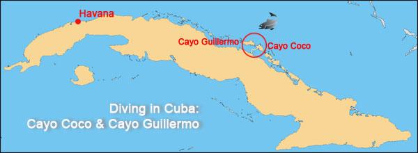 Diving Center Cayo Coco-Cayo Guillermo - CubaTopTravel